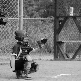 Ball's in by Beth Thomander - Sports & Fitness Baseball ( catcher, umpire, baseball, pitcher, playball,  )