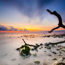 by Wisnu Taranninggrat - Landscapes Beaches