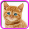 Talking, Dancing Cat. 1.1.7 Apk