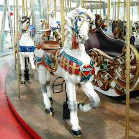 Zeum Carousel by Stephen Beatty - City,  Street & Park  Amusement Parks