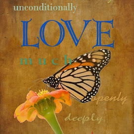 l o v e by Steven Faucette - Typography Words ( love, butterfly, passionately, unconditionally, tenderly, eternally, valentine, always )