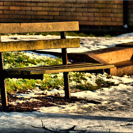 Take a seat by Nic Scott - Artistic Objects Furniture ( winter, bench, snow, sunlight )