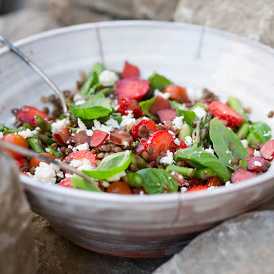 Maple Tossed Rhubarb & Puy Salad