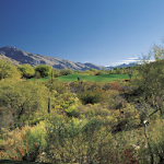 La Paloma Country Club APK Image