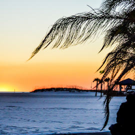 Chilling at sunset by Diane Davis - Landscapes Sunsets & Sunrises