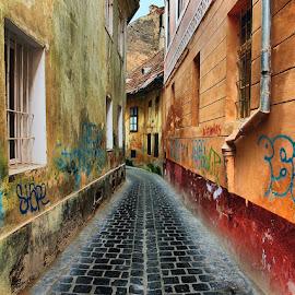 by George Nutulescu - City,  Street & Park  Street Scenes
