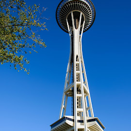 The Space Needle, Seattle, WA by Judy Rosanno - Buildings & Architecture Statues & Monuments ( washington, space needle, seattle,  )