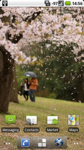 櫻花日本櫻花