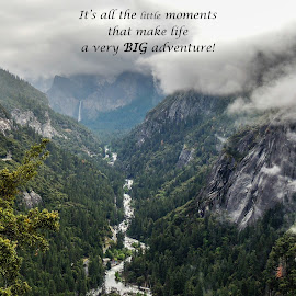 It's Life Little Moments by Jennifer McWhirt - Typography Quotes & Sentences ( quotes and sentences, california, yosemite national park, landscape, typography, nikon )
