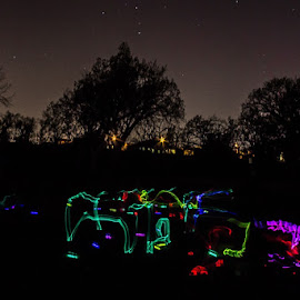 Glow in the dark Easter egg hunt! by Jason Holden - Abstract Light Painting