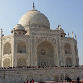 TAJ MAHAL by Naveen Aggarwal  - Buildings & Architecture Statues & Monuments