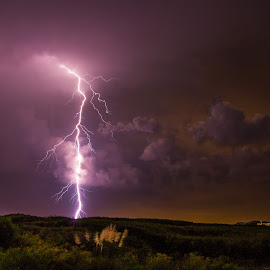 Liam is Born! by Jason Green - Landscapes Weather ( #storms #weather #florida #lightning #clouds )