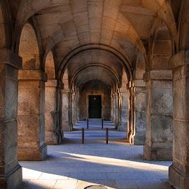 San Lorenzo de El Escorial by Christian Diboky - Buildings & Architecture Architectural Detail ( españa, madrid, violet, monastery, san lorenzo, el escorial, yellow, spain )
