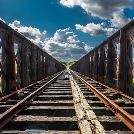 Wrong Way by Alexandre Mestre - Transportation Railway Tracks ( guadiana, train, bridge, portugal, river, land, device, transportation )