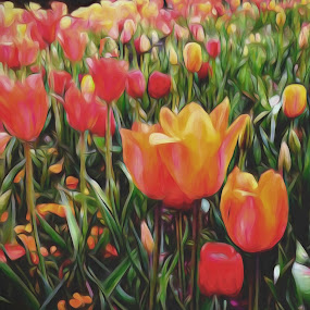 Blooming Tulips by Allen Crenshaw - Painting All Painting ( dallas arboretum, flower art, tulips, spring )