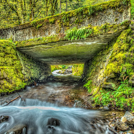 Under the Road by Greg Wytcherley - Landscapes Waterscapes ( water, oregon, wahkeena, creek, falls, historic )