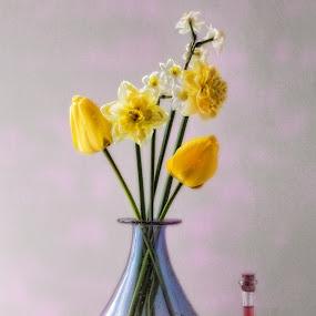 wild flowers by Stephen Hooton - Flowers Flower Arangements