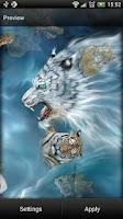 Screenshot of Tigers Live Wallpaper