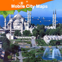 Istanbul Street Map icon