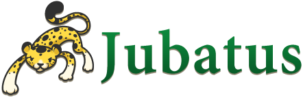 Jubatus Workshop