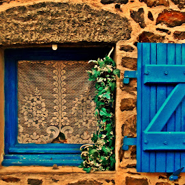 blue window by Dobrin Anca - Buildings & Architecture Other Exteriors ( window, blue, brittany, house, flower,  )