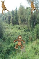 Screenshot of Monkey Land