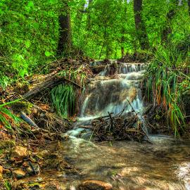 Little Cascades 2 by Siniša Biljan - Nature Up Close Water