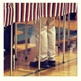 Vote! by Whitney Bowley - News & Events Politics