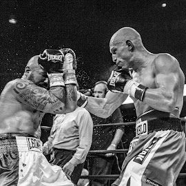 Wlodarczyk vs. Fragomeni by Mike Bacos - Sports & Fitness Boxing ( black and white, boxing, chicago )