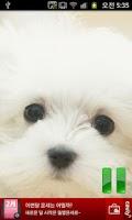 Screenshot of 강아지 웃음