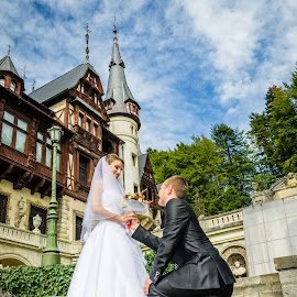 Bride & Groom at Peles Castle by Andrei Butnaru - Wedding Bride & Groom ( wedding at castle )