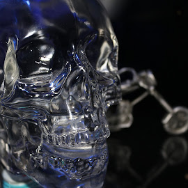 Vodka Skull by Michelle Bonin - Artistic Objects Glass