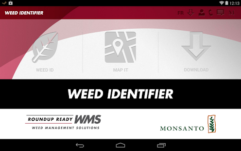 Weed ID- screenshot thumbnail