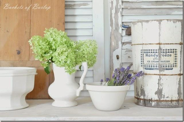 lavender & limelights