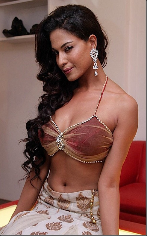 Veena-Malik-hot-pose
