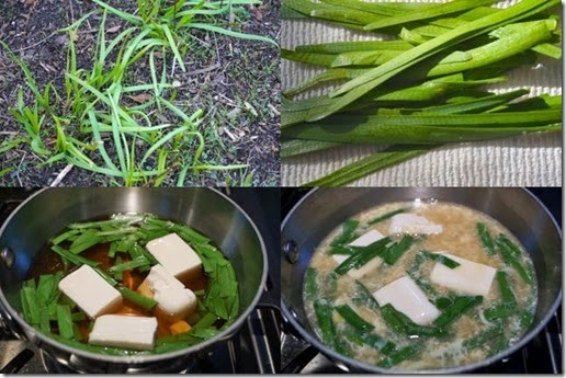Garlic chive soup