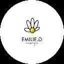Image Google de Emilie Gallo