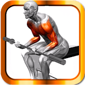 Body Muscle Trainer&Building