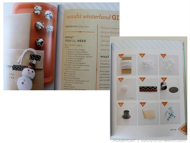 Washi Wonderful Book Review via homework | carolynshomework.com