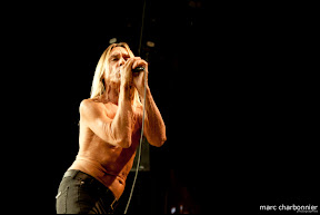 Iggy and the Stooges-1.jpg