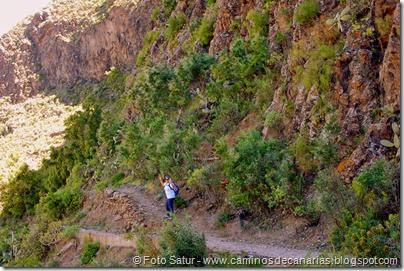7924 Circular Montaña Guía(Camino Anzo)