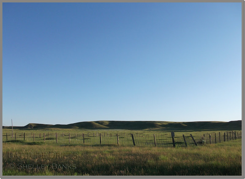 Fence - Grasslands National Park - photo by Shelley Banks