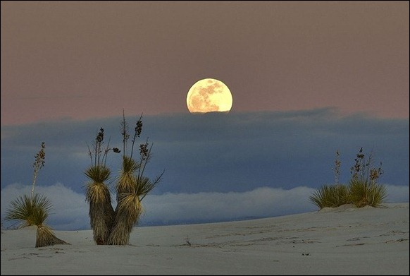 White_Sands_National_Monument_13