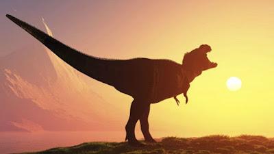 Tìm thấy sự sống sau thời kỳ khủng long