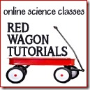 Red Wagon Tutorials 2 125