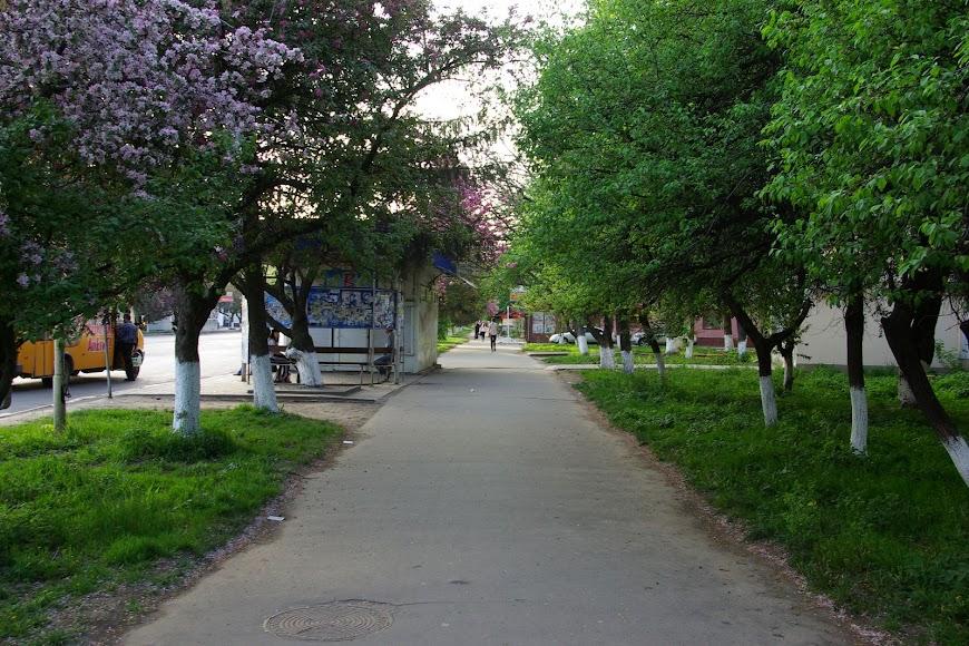 uzhgorod-0017.JPG
