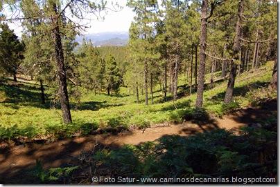 6395 Deg. Las Palomas-Bº. Hondo