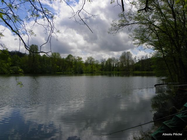 Petit lac photo #1148