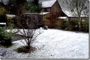 snow in the garden bg