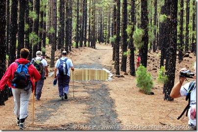 095 Camino Chinyero
